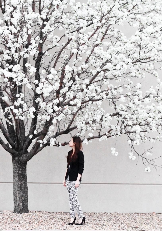 tammy_de_fox_style_1flowertree-8